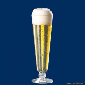 Plastikowy kufel do piwa tulipan 0,2l litra SAN - szkłopodobny szkłopodobne kufle plastikowe